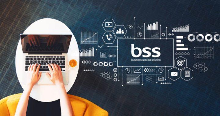 BSS GmbH Banner